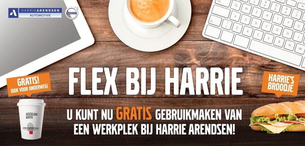 flex_harriearendsen